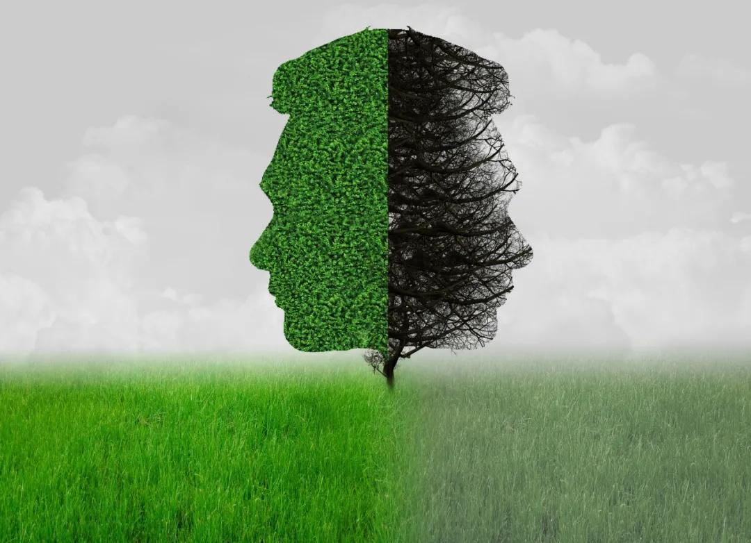 心理咨询师,心理咨询,职业倦怠,自我怀疑,心理学