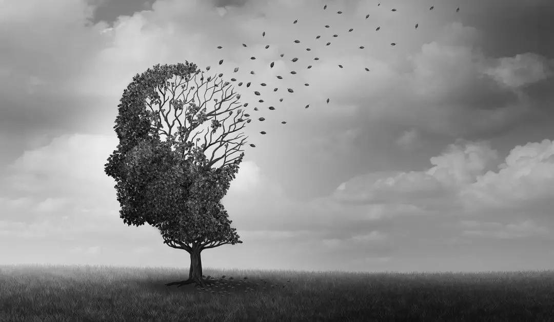 心理学,人际交往,同理心,身心发展