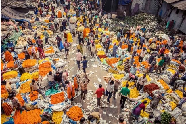 印度,疫情,贫穷,教育